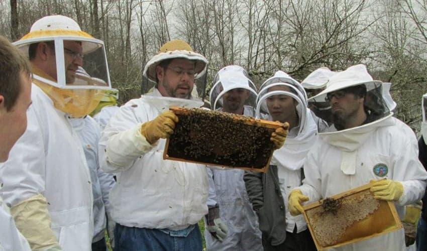 beekeeping education