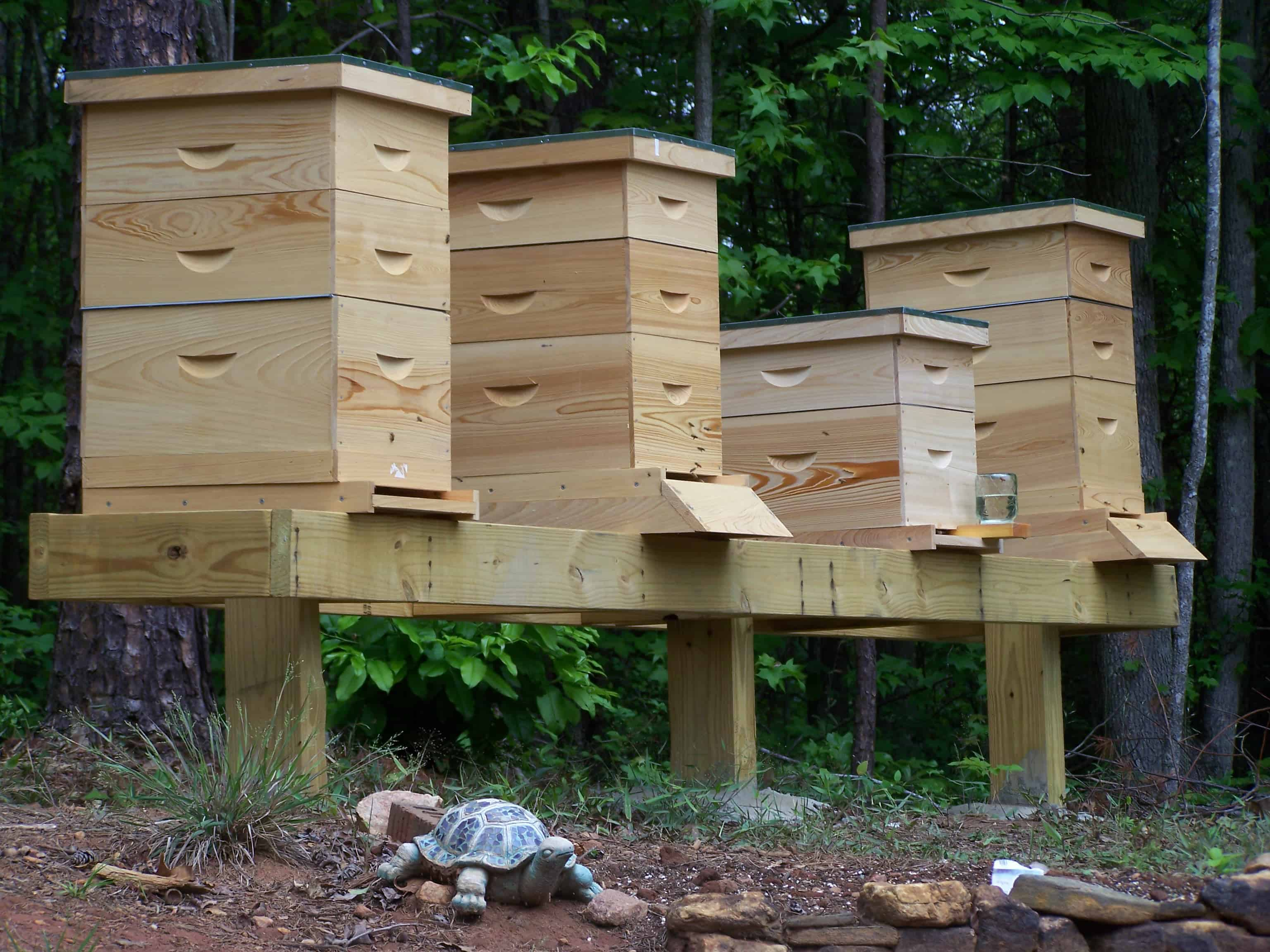 Hive Stand Designs : Simple hive stand
