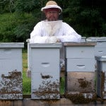 What is the best way to deal with weak hives during the Fall season?