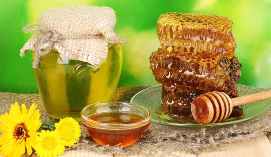 When do I harvest my honey?