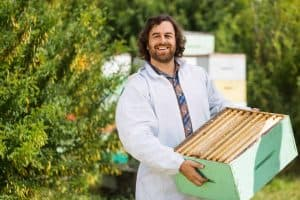 Bees for Sale, Package Bees for Sale, and Beekeeping Supplies in Syracuse, New York
